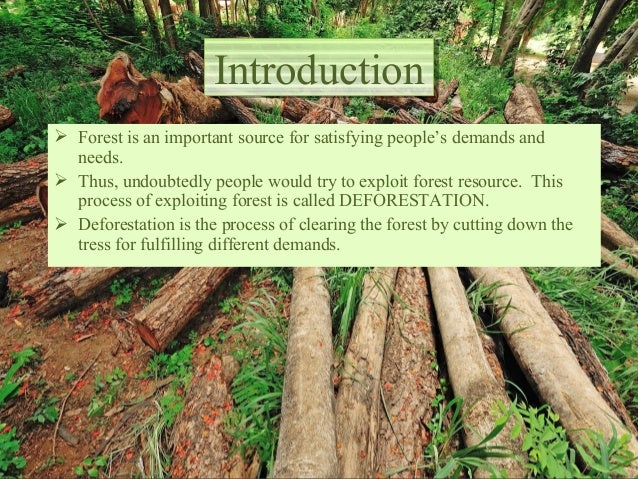 Deforestation in the world, its current situation, its causes, its ef…
