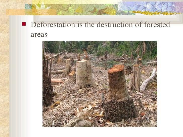 Deforestation Slide 2