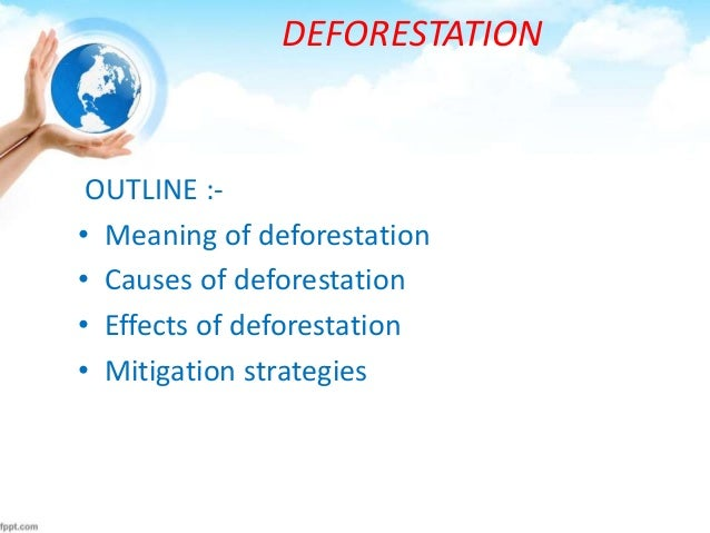 how can high school students contribute and become involved in deforestation
