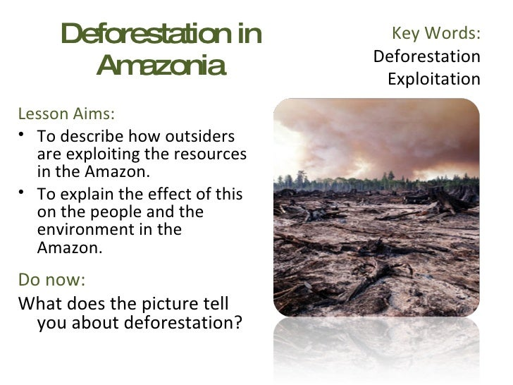 Deforestation in Amazonia <ul><li>Lesson Aims: </li></ul><ul><li>To describe how outsiders are exploiting the resources in...