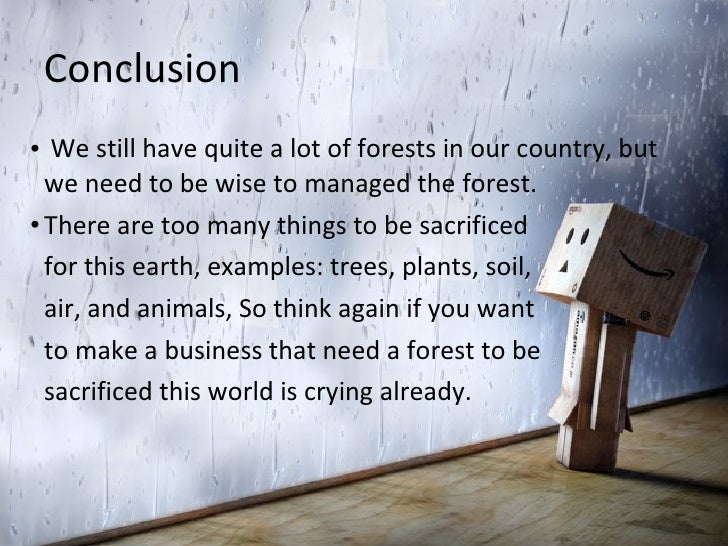Deforestation Indonesia