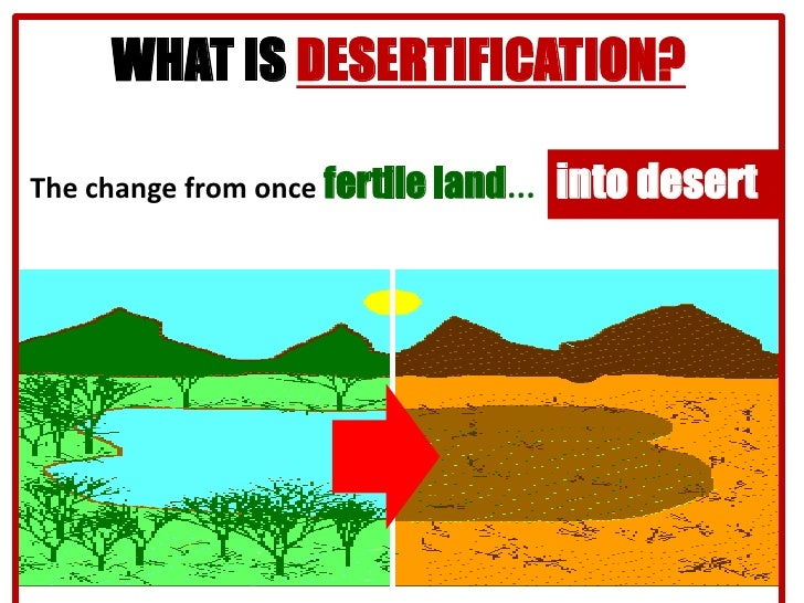 agriculture in deforestation and desertification environmental sciences essay Causes and effects of desertification: desertification is defined as a process of land degradation in arid, semi-arid and sub-humid areas other factors that cause desertification include urbanization, climate change, overdrafting of groundwater, deforestation, natural disasters and tillage practices in.
