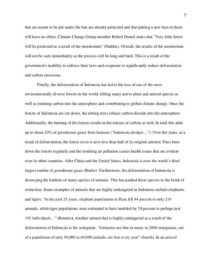 Indonesian history essay
