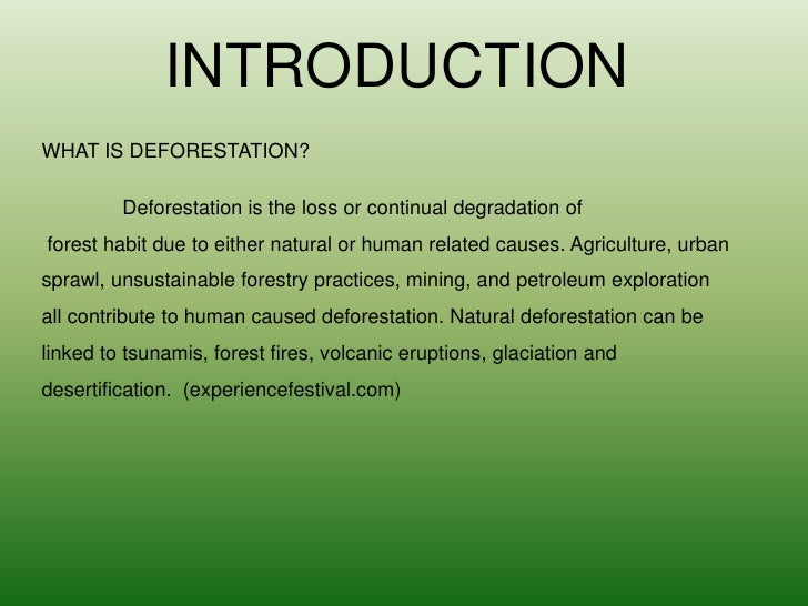 Deforestation Effects Causes And Examples Top 10 List