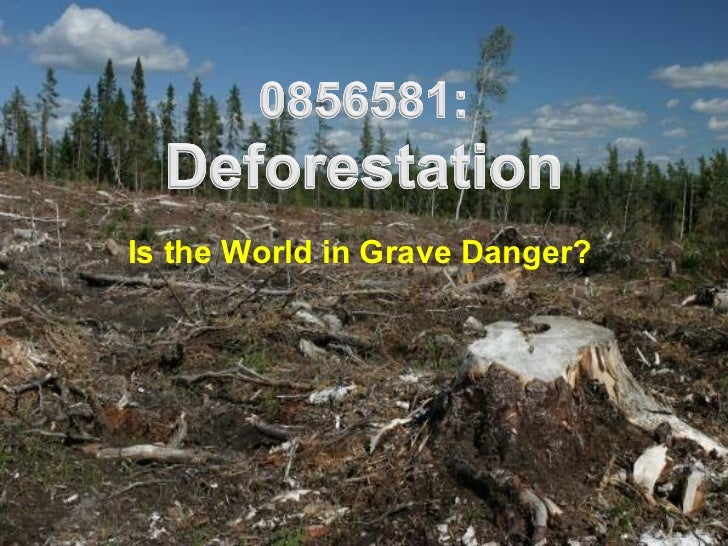 dangers of deforestation to the planet