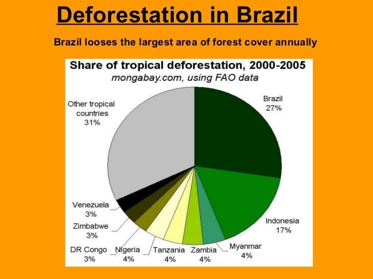 deforestation in brazil
