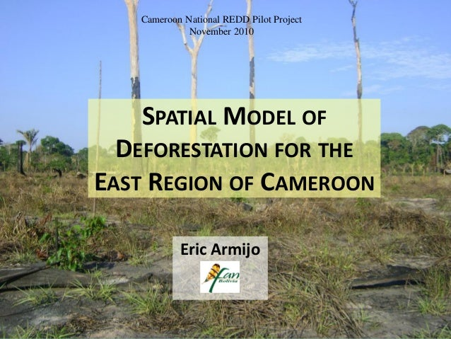 SPATIAL MODEL OF DEFORESTATION FOR THE EAST REGION OF CAMEROON Eric Armijo Cameroon National REDD Pilot Project November 2...