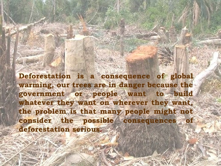 the seriousness of the issue of deforestation 14062018  project amazonia: threats - deforestation  deforestation is a problem that affects the entire amazon rainforest ecosystem as a whole models of the future.