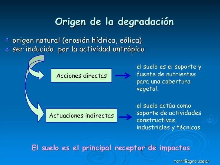 Degradaci n de suelos indicadores de calidad for Significado de suelo