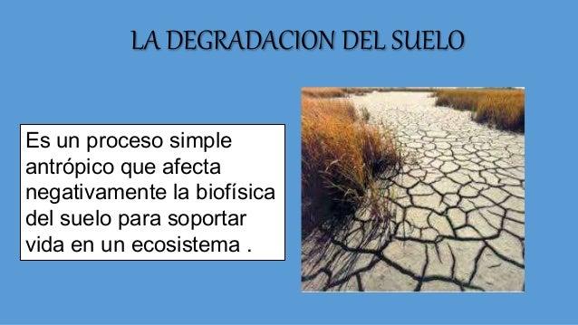 Degradacion del suelo for A que se denomina suelo
