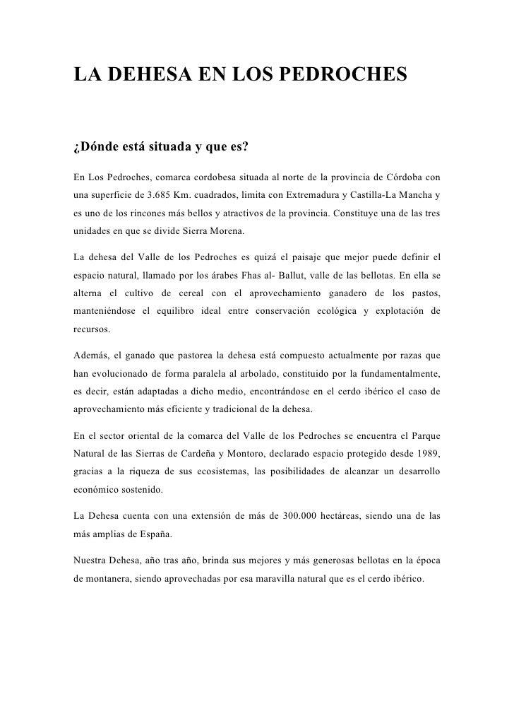 LA DEHESA EN LOS PEDROCHES   ¿Dónde está situada y que es?  En Los Pedroches, comarca cordobesa situada al norte de la pro...