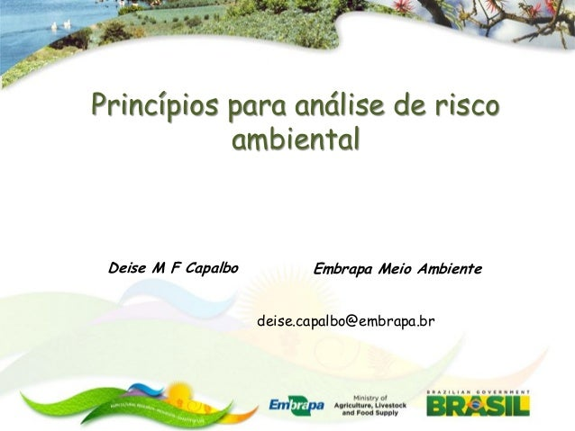 Princípios para análise de risco           ambiental Deise M F Capalbo          Embrapa Meio Ambiente                     ...