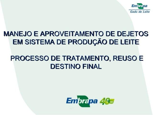 Demais slides DEJETOS DA PECUÁRIA LEITEIRA, REUSO DA ÁGUA E FERTIRRIGAÇÃO PROCESSO DE TRATAMENTO, REUSO E DESTINO FINAL 12...