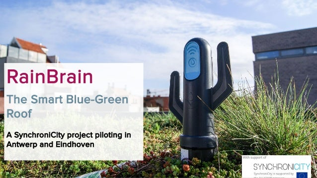RainBrain The Smart Blue-Green Roof A SynchroniCity project piloting in Antwerp and Eindhoven