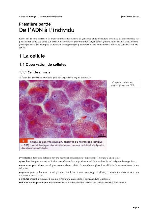 Cours de Biologie – Licence pluridisciplinaire Jean-Olivier Irisson Première partie De l'ADN à l'individu L'objectif de ce...