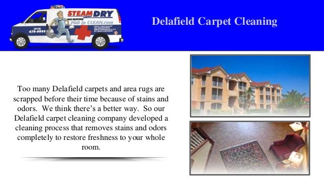 Carpet Cleaning Methods