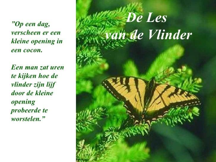 """De Les  van de Vlinder """" Op een dag, verscheen er een kleine opening in een cocon. Een man zat uren te kijken hoe de vlind..."""