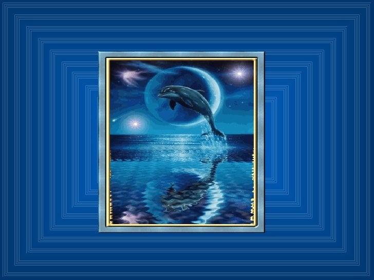 Delfines Slide 1