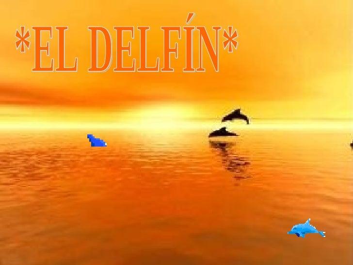 *EL DELFÍN*