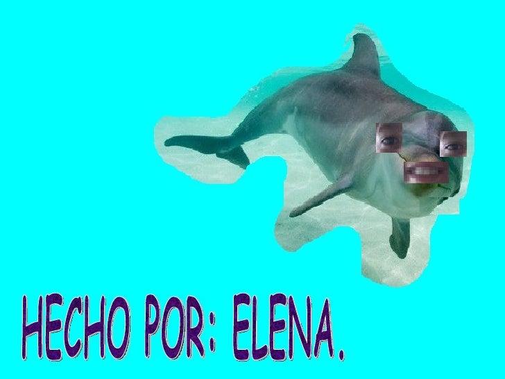 HECHO POR: ELENA.