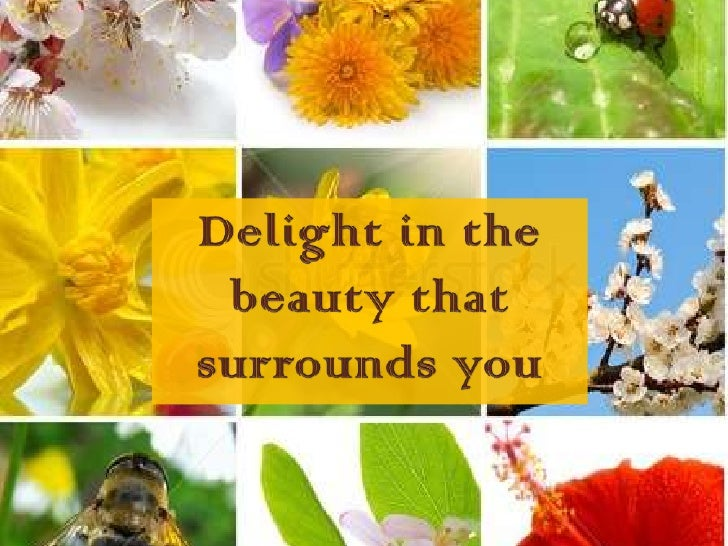 Delight in the beauty that surrounds you<br />