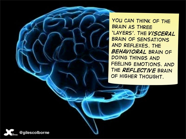 You can think of the                  brain as three                  'layers'. The visceral                  brain of sen...