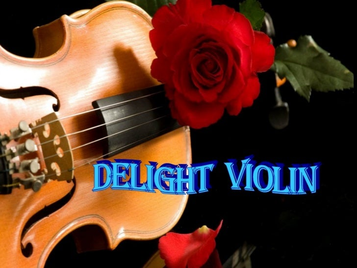 DELIGHT VIOLIN