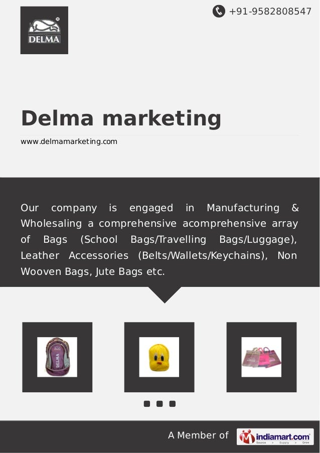 +91-9582808547 A Member of Delma marketing www.delmamarketing.com Our company is engaged in Manufacturing & Wholesaling a ...