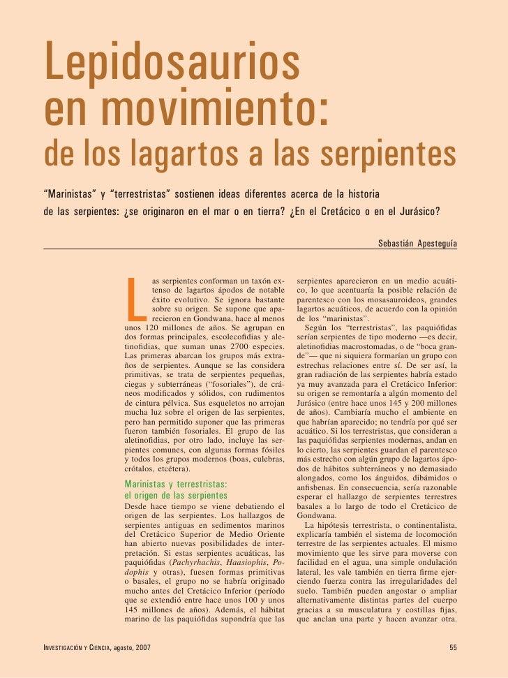 """Lepidosaurios en movimiento: de los lagartos a las serpientes """"Marinistas"""" y """"terrestristas"""" sostienen ideas diferentes ac..."""