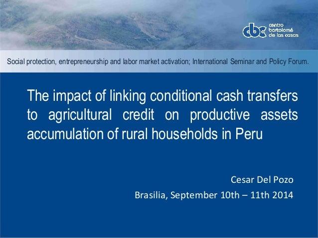 Social protection, entrepreneurship and labor market activation; International Seminar and Policy Forum.  The impact of li...