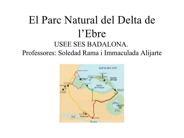 El Parc Natural del Delta de l'Ebre USEE SES BADALONA.  Professores: Soledad Rama i Immaculada Alijarte