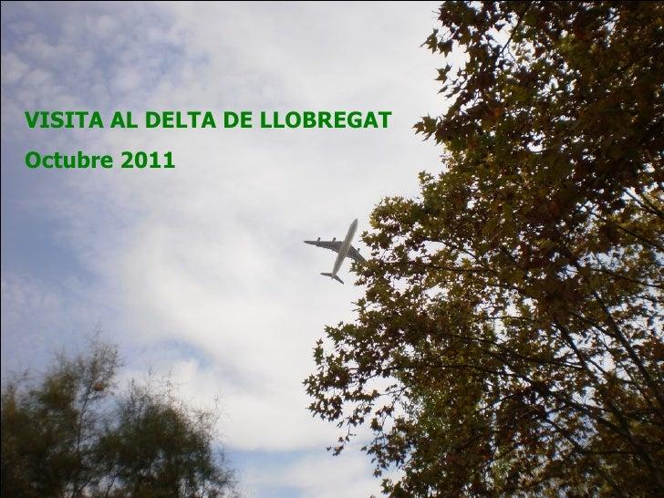 VISITA AL DELTA DE LLOBREGAT  Octubre 2011