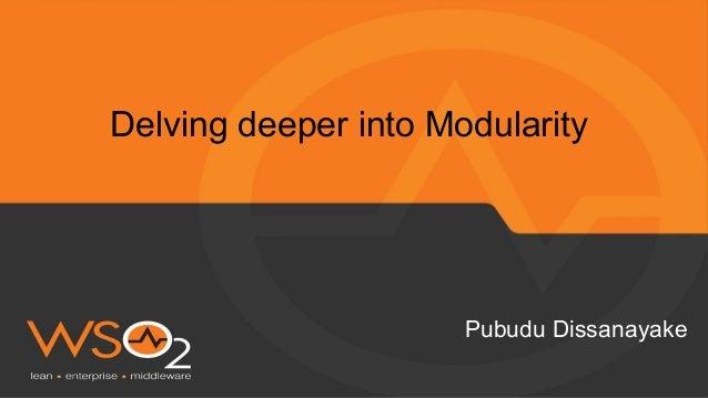 Delving deeper into Modularity Pubudu Dissanayake