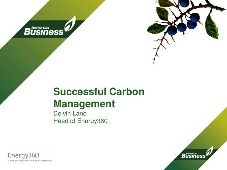 Successful Carbon Management Delvin LaneHead of Energy360<br />