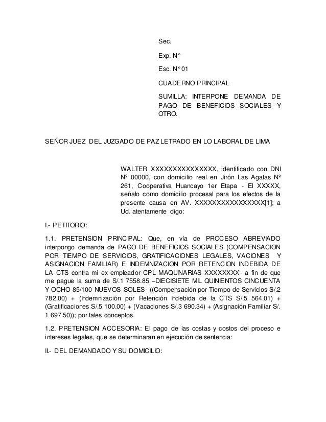 Sec.  Exp. N°  Esc. N° 01  CUADERNO PRINCIPAL  SUMILLA: INTERPONE DEMANDA DE  PAGO DE BENEFICIOS SOCIALES Y  OTRO.  SEÑOR ...