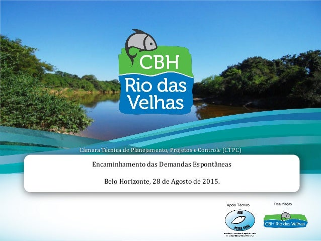 1 Encaminhamento das Demandas Espontâneas Belo Horizonte, 28 de Agosto de 2015. Apoio Técnico Realização Câmara Técnica de...