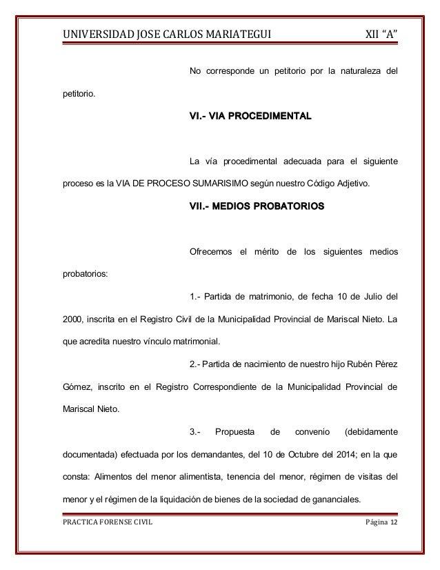 """UNIVERSIDAD JOSE CARLOS MARIATEGUI XII """"A""""  No corresponde un petitorio por la naturaleza del  petitorio.  VI.- VIA PROCED..."""