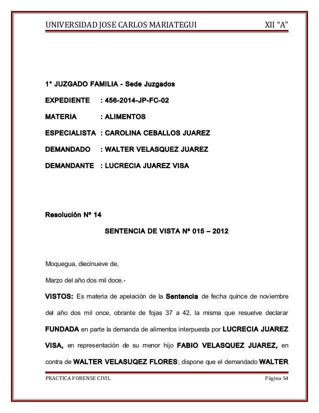 """UNIVERSIDAD JOSE CARLOS MARIATEGUI XII """"A""""  1° JUZGADO FAMILIA - Sede Juzgados  EXPEDIENTE : 456-2014-JP-FC-02  MATERIA : ..."""