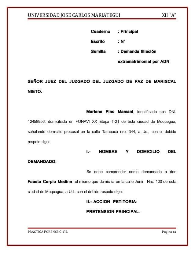 """UNIVERSIDAD JOSE CARLOS MARIATEGUI XII """"A""""  Cuaderno : Principal  Escrito : N°  Sumilla : Demanda filiación  extramatrimon..."""