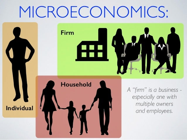 elements of microeconomics What are the branches of economics  macroeconomics and microeconomics  main elements and overarching systems.