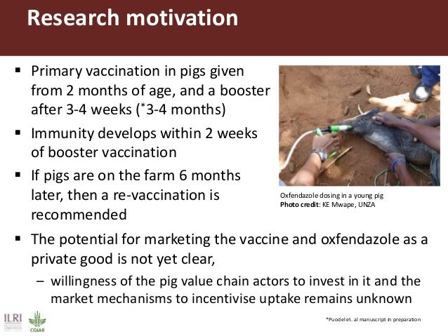 Research objective  To assess the potential demand for the TSOL 18 vaccine and Oxfendazole package by pig farmers and dem...