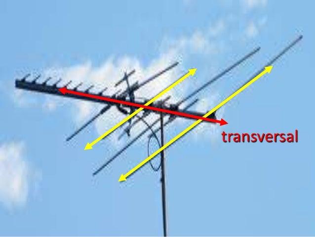 transversal line