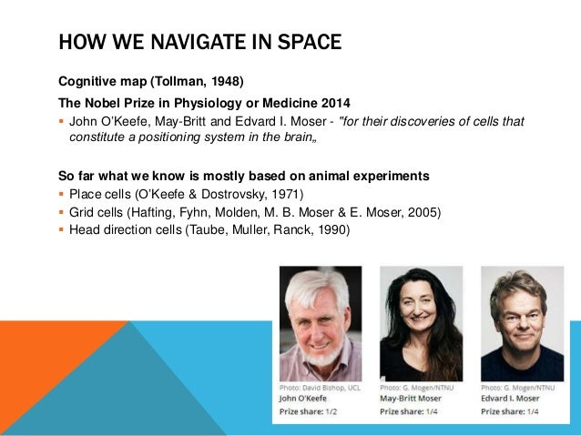 HOW WE NAVIGATE IN SPACE  Cognitive map (Tollman, 1948)  The Nobel Prize in Physiology or Medicine 2014   John O'Keefe, M...