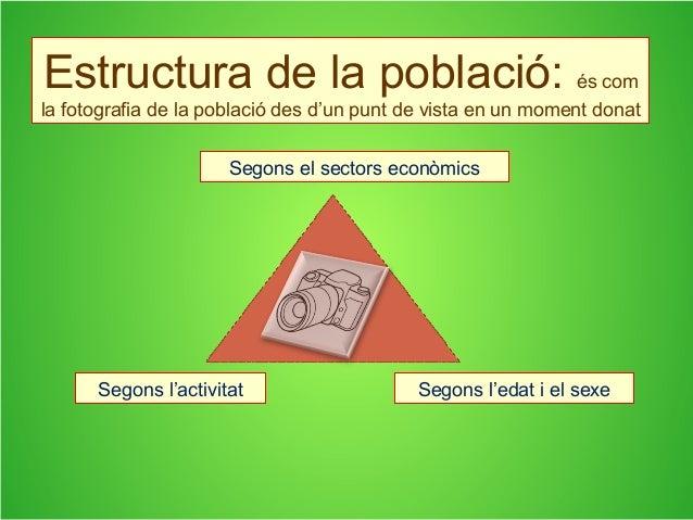 Estructura de la població: és com la fotografia de la població des d'un punt de vista en un moment donat Segons el sectors...