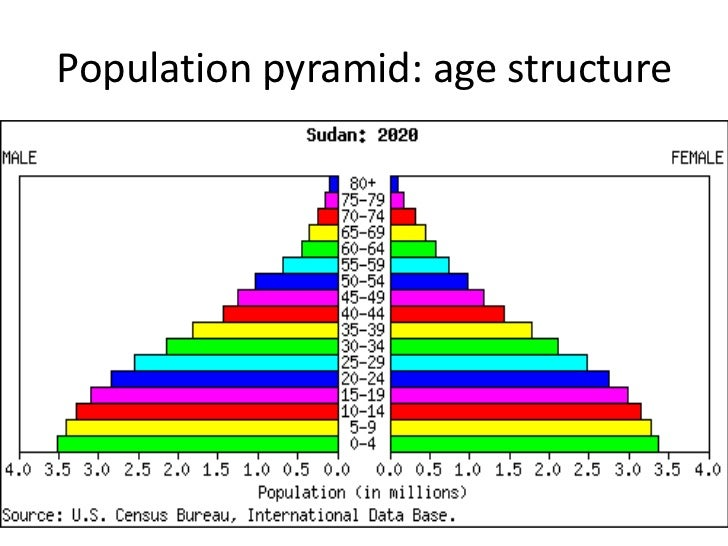 what will the u s population look like in the year 2050