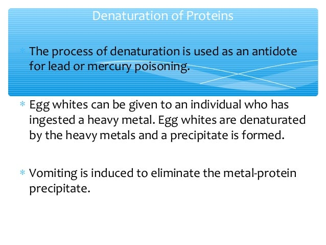 denaturation of proteins For a level biology,  protein structure and denaturation - a level biology revisify loading  proteins: amino acids,.