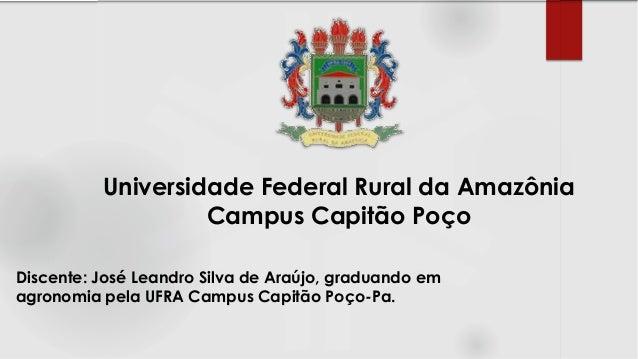 Discente: José Leandro Silva de Araújo, graduando em agronomia pela UFRA Campus Capitão Poço-Pa. Universidade Federal Rura...