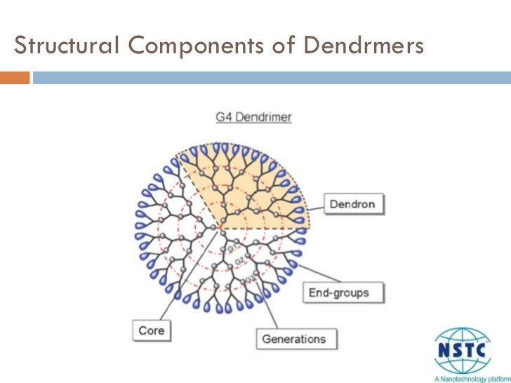 Structural Components of Dendrmers