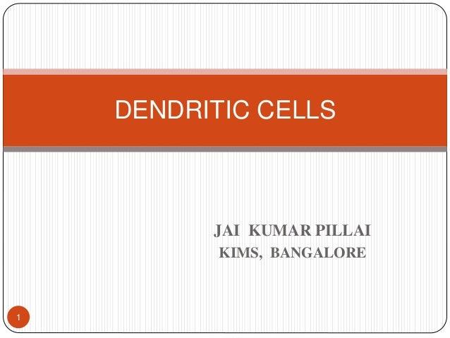 JAI KUMAR PILLAI KIMS, BANGALORE DENDRITIC CELLS 1