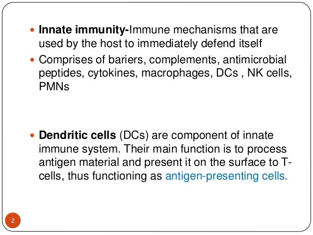 Dendritic cells Slide 2